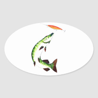 Pike fishing and fly fishing oval sticker