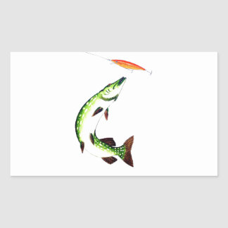 Pike fishing and fly fishing sticker