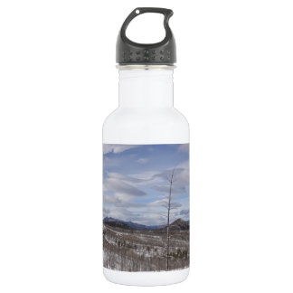 Pike Forest Water Bottle