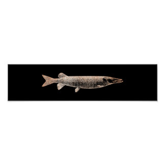 Pike Jack Fish Blush Metallic Pink Rose Black Poster