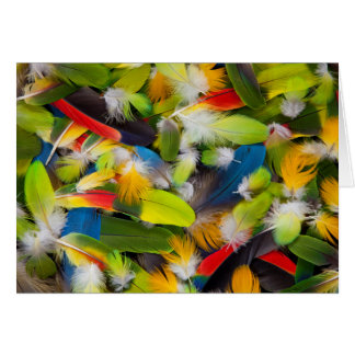 Pile of colorful feathers card