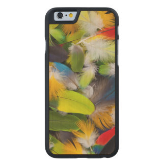 Pile of colorful feathers carved® maple iPhone 6 case
