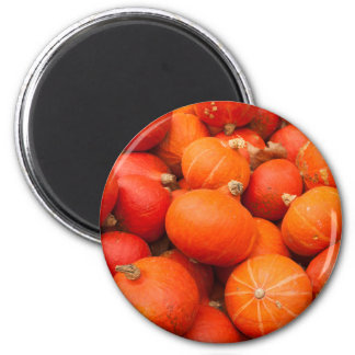 Pile of small pumpkins, Germany 2 Inch Round Magnet