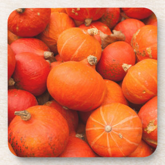 Pile of small pumpkins, Germany Beverage Coasters