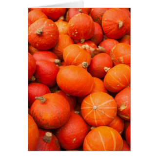 Pile of small pumpkins, Germany Card
