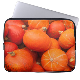 Pile of small pumpkins, Germany Laptop Sleeve