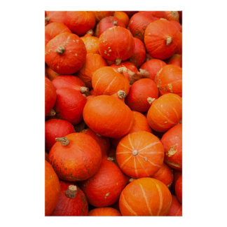 Pile of small pumpkins, Germany Poster