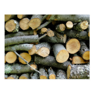 Pile of Stacked Cut Firewood Postcard