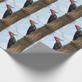 Pileated Woodpecker (3625) Wrapping Paper