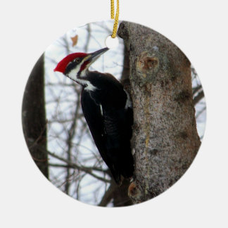 Pileated Woodpecker Ceramic Ornament