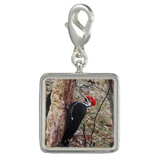 Pileated  Woodpecker Charm