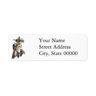 Pileated Woodpecker, John Audubon Return Address Label