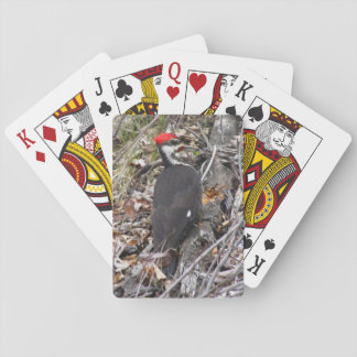 Pileated Woodpecker Pecking Poker Card
