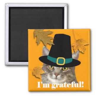 Pilgrim kitty magnet
