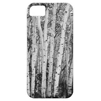 Pillars Of The Wilderness iPhone 5 Case