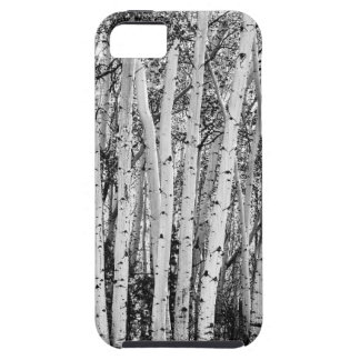 Pillars Of The Wilderness iPhone 5 Cover