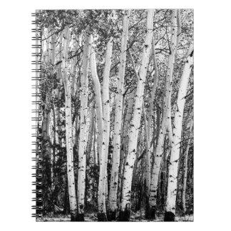 Pillars Of The Wilderness Notebooks