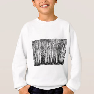 Pillars Of The Wilderness Sweatshirt