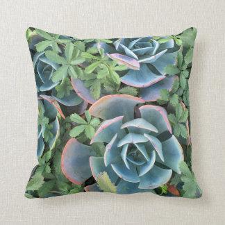 Pillow beautiful cacti mixed into greenery