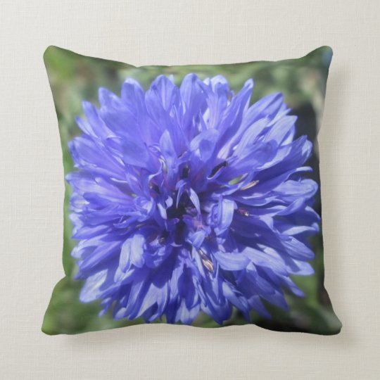 Pillow - Cornflower Blue Bachelor's Button