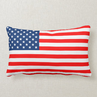 Pillow Flag the USA