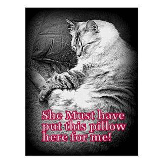 Pillow for me Postcard
