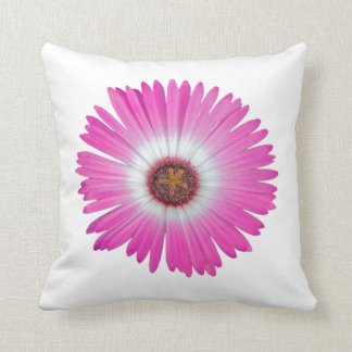 "Pillow Shasta Daisy in ""hot pink"""