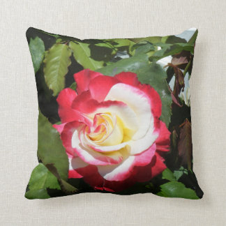 Pillow w/ red tipped gorgeous Balboa Island rose