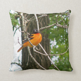 Pillows featuring songbirds