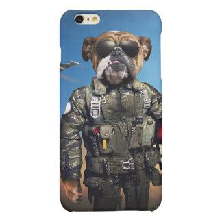 Pilot dog,funny bulldog,bulldog