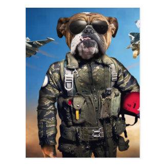 Pilot dog,funny bulldog,bulldog postcard