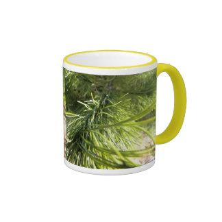 PIn needles Coffee Mugs