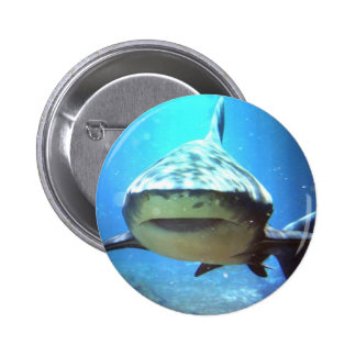 Pin rond de requin macaron rond 5 cm