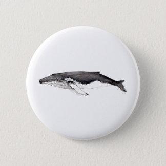 Pin´s, button, broach hunchbacked whale, yubarta 2 inch round button