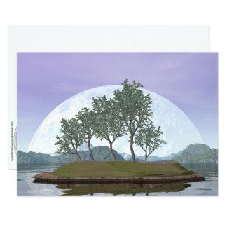 Pine bonsai - 3D render Card