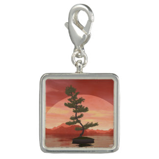 Pine bonsai - 3D render Charm