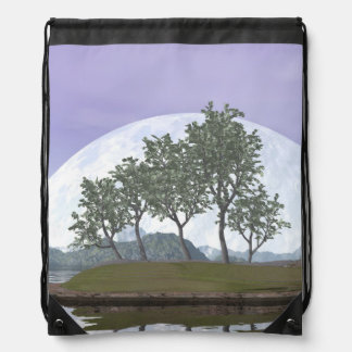 Pine bonsai - 3D render Drawstring Bag