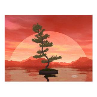 Pine bonsai - 3D render Postcard