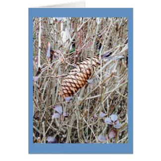 Pine Cone and Flowers in the Grass Card