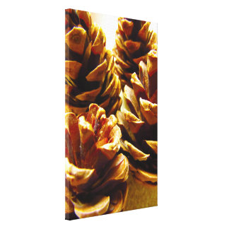 Pine Cone Canvas