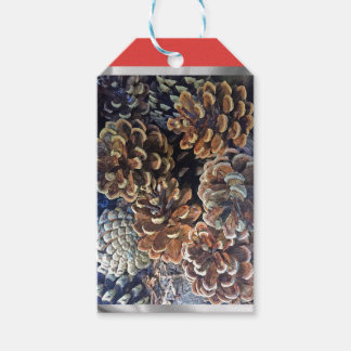 Pine cone gift tag