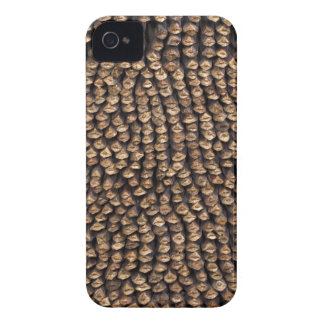Pine Cone Pattern iPhone 4 Cover