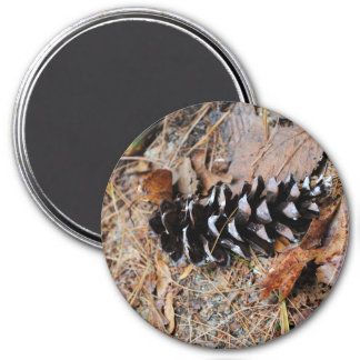 Pine Cone Photograph Magnet