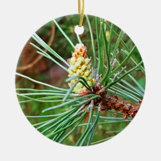 Pine cone tree brach ceramic ornament