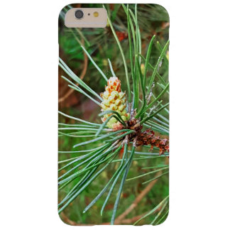 Pine cone tree needles photograph barely there iPhone 6 plus case