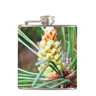 Pine cone tree needles photograph hip flask