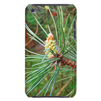 Pine cone tree needles photograph iPod Case-Mate case