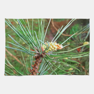 Pine cone tree needles photograph kitchen towel