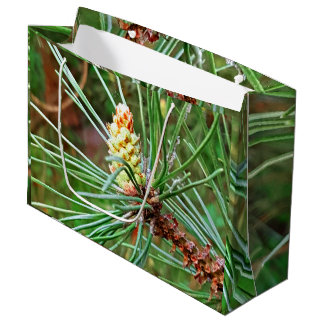 Pine cone tree needles photograph large gift bag