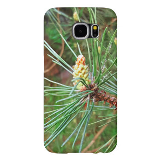 Pine cone tree needles photograph samsung galaxy s6 cases